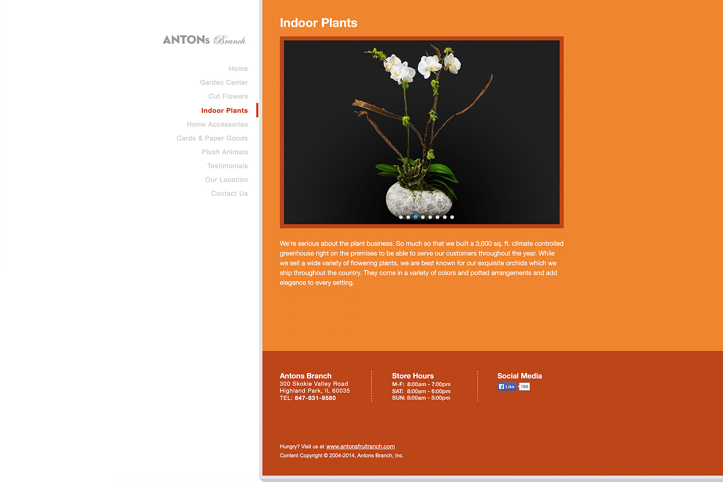 a screen capture of the indoor plants page, featuring a beautiful potted phalaenopsis orchid plant for sale at the antons branch